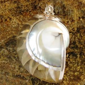 Liontin Silver Natural Shell, Souvenir Exclusive dari USA