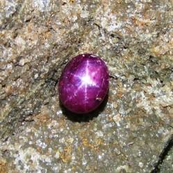 Natural Star Ruby 5.95 carat