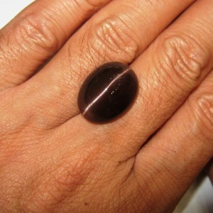Cat Eye 14.55 cts Reddish Brown Spectrolite Luster Bagus!