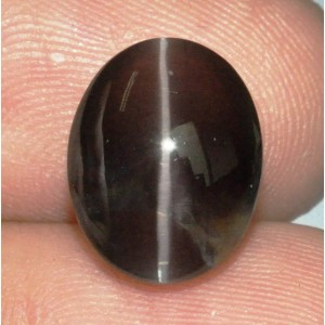 Sillimanite Cat Eye 5.22 carat