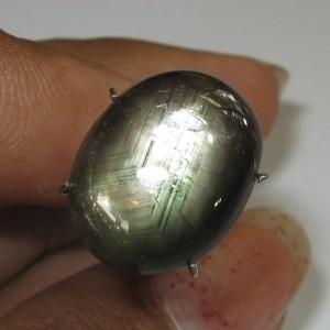 Golden Black Star Sapphire 11.30 carat
