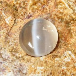 Sillimanite Cat Eye Round Cab. 2.90 carat