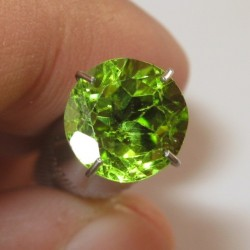 Round Peridot Yellowish Green 1.98 carat