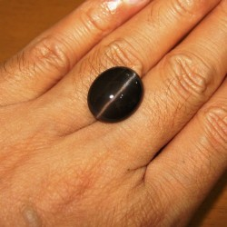 Cats Eye Spectrolite 14.28 carat