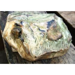 Bongkahan Batu Sepa Berbentuk Kepala Macan