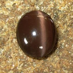 Reddish Brown Spectrolite Cat Eye 6.80 carat
