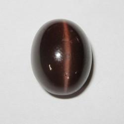 7.79 carat Spectrolite Cat Eye Reddish Brown
