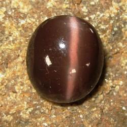 Natural Cats Eye Spectrolite 8.00 carat