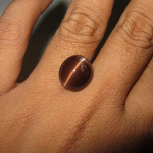 Batu Mulia Natural Cats Eye Spectrolite 13.26 carat