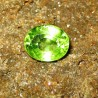 Peridot Yellowish Green 1.80 carat