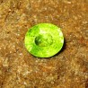 Yellowish Green Peridot 2.92 Carat Oval Cut