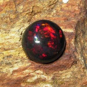 Batu Mulia Berkualitas Black Opal Round Luster Merah 2.00 carat