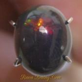 Oval Cab Floral Black Opal 2.05 carat