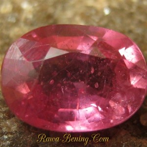 Batu Mulia Lucu Oval Pinkish Red Ruby 1.00 carat