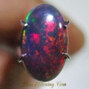 Batu Black Opal Motif Harlequin 0.95 carat Asli dan Berkualitas