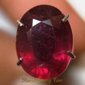 Oval Red Ruby 2.50 carat Top Fire Luster