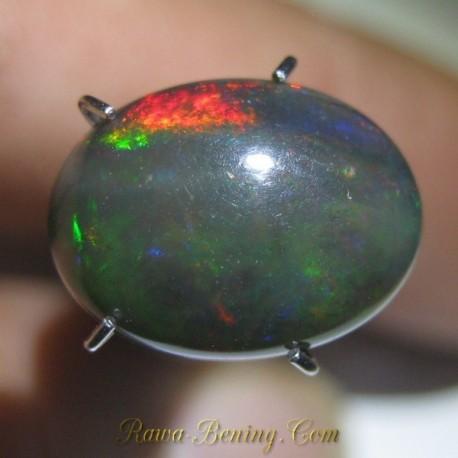 Batu Mulia Natural Black Opal Neon Green Fire 2.40 carat