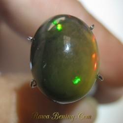 Brownish Green Black Opal 5.35 carat