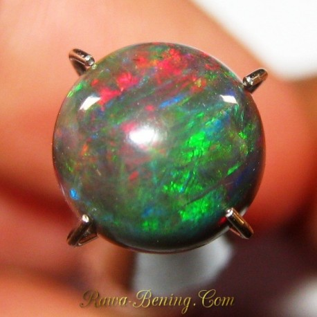 Natural Black Opal Round Cab Neon Green 1.25 carat