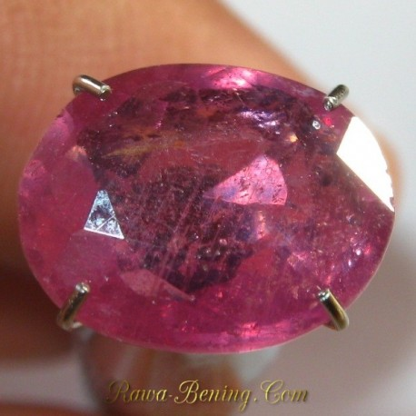 Natural Safir Pinkish Orange Oval Cut 3.26 carat