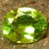 Batu Peridot Intense Green 1.95 carat