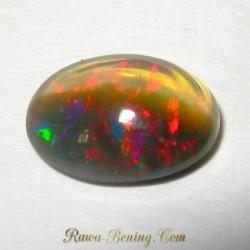 Black Opal Blasteran 1.75 carat