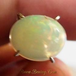 Batu Mulia Opal Tea Rainbow 1.50 Carat
