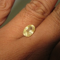 Natural Yellow Sapphire 2.68 cts